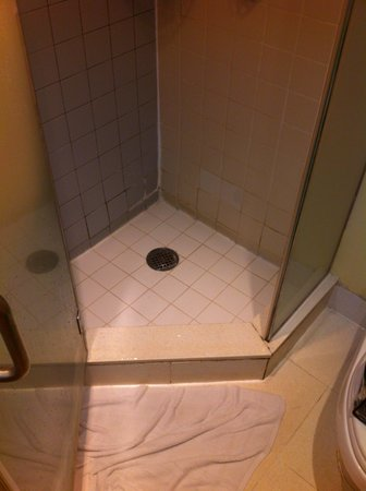 The Time New York: Shower stall