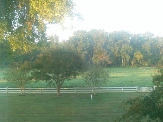 The Bed and Breakfast at Peace Hill: Morning view from the Holdcroft room