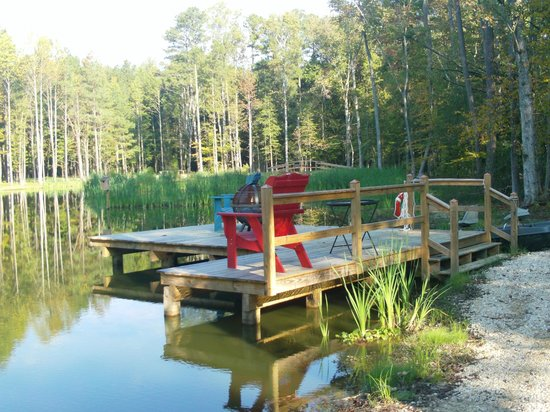 The Bed and Breakfast at Peace Hill Farm: Pond on adjoining farm where you can fish