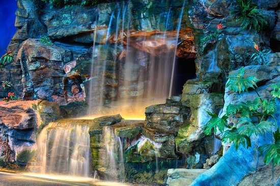 waterfall inside aquarium picture of ripley s aquarium of the