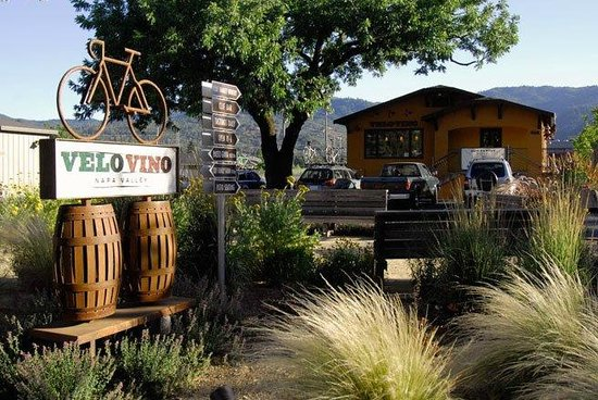 Clif Family Winery: A home away from home