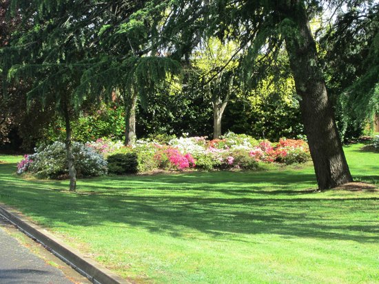 The George Kerferd: May Day Hill gardens