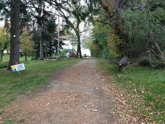 The Pines Motel and Resort : Path to Lake Erie