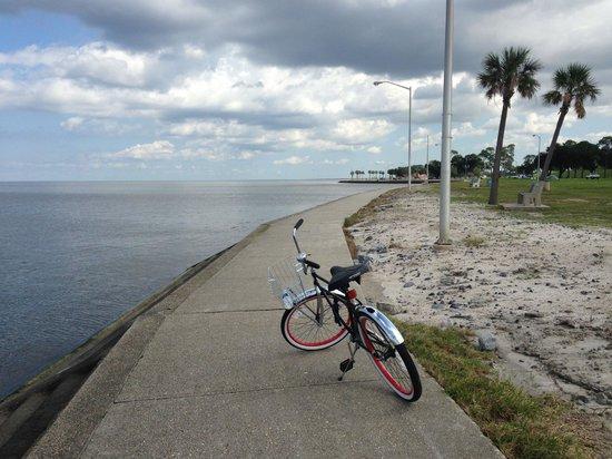 The American Bicycle Rental Company: Along Lake Pontchartrain