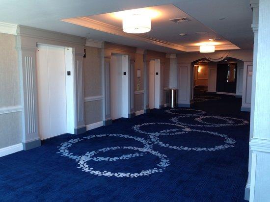Grand Pequot Tower: Nice hallway carpeting