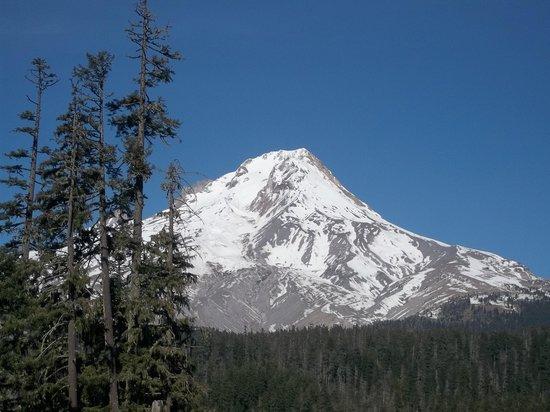 Mount Hood: Getting closer to Mt Hood