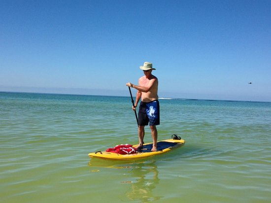 Siesta Paddle Sports : Great, stable, paddle boards!