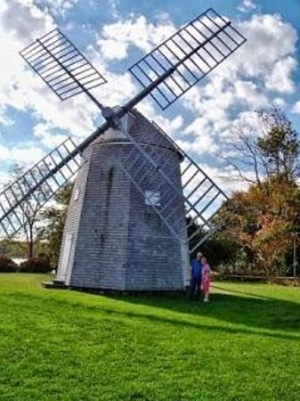 Jonathan Young Windmill : So pretty!