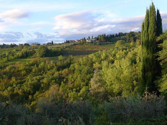 Borgo dei Cadolingi: View fall