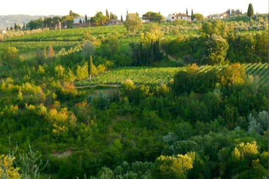 Borgo dei Cadolingi: View summer