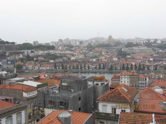 Porto Free Tour: Great view to wine cellars