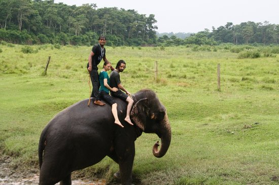 Hotel Parkside: Elephant Rides... with one of the kindest elephant drivers out there! He stays with her at the h