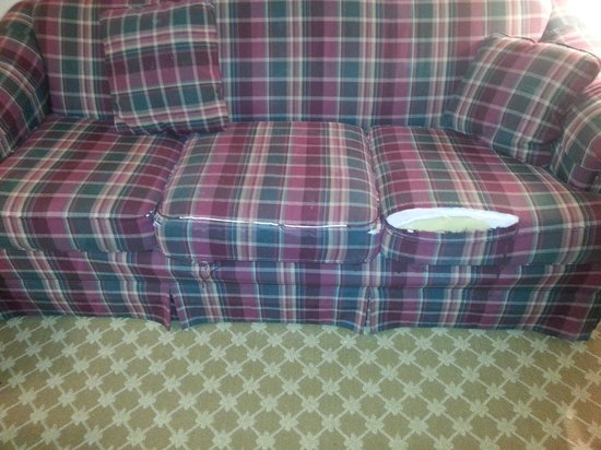 Country Inn & Suites By Carlson, Alexandria : Nice sofa...not!