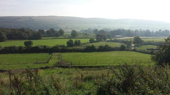 Greenbank Farm B&B: Breathtaking landscape