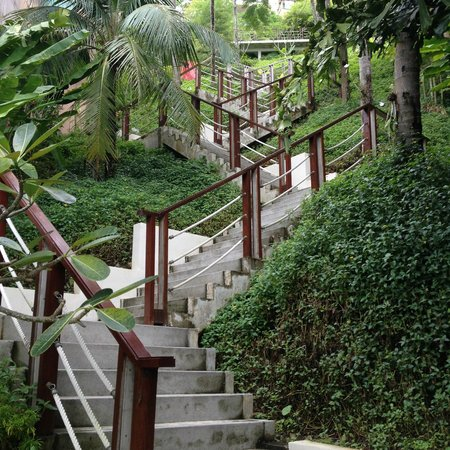 The Westin Siray Bay Resort & Spa Phuket: stairs that take you to your room