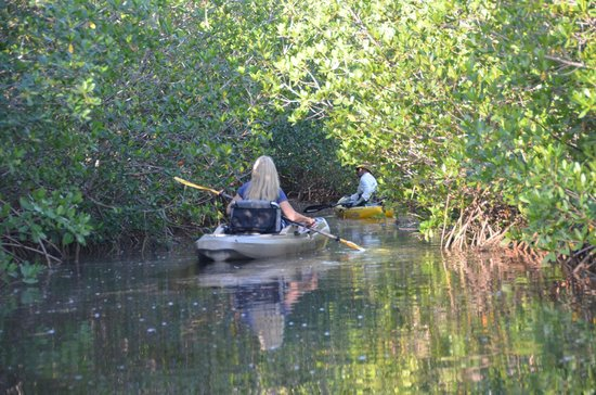 Kayak Charters : Heading deeper in