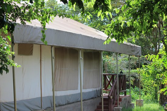 Mara Leisure Camp : Jumbo 14