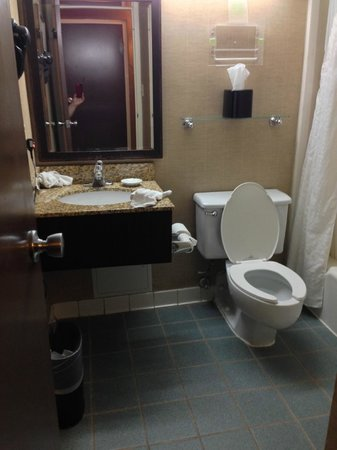 Holiday Inn Strongsville: No counter space, small shower/tub area, tiny bathroom