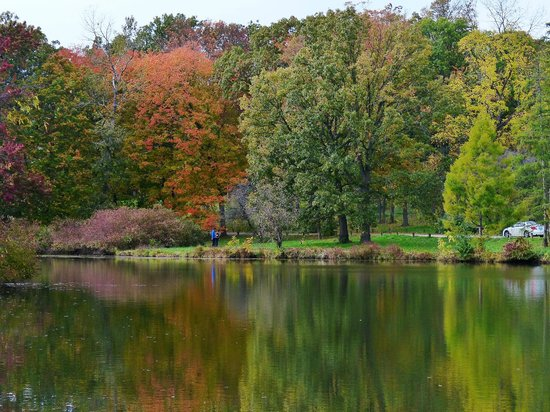 Morton Arboretum: Early fall colors reflecting in Lake Marmo on the West Side