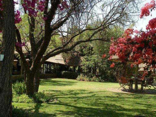 The Farm Inn: the beautiful gardens