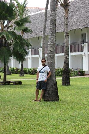 Voyager Beach Resort: jardin