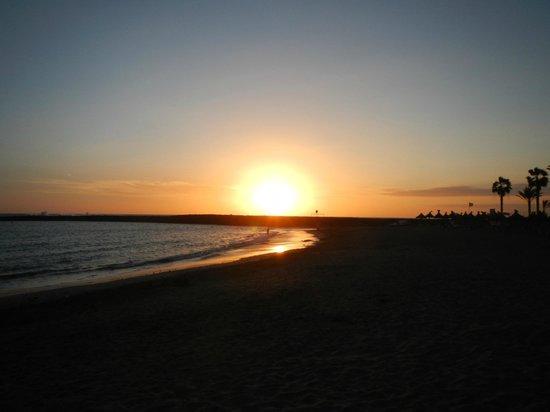 Cleopatra Palace Hotel : Вечерний пляж