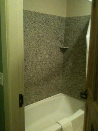 Plaza Hotel: Room 318 - shower/bath