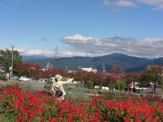 Miharasi Farm: kadann mae karano kesiki