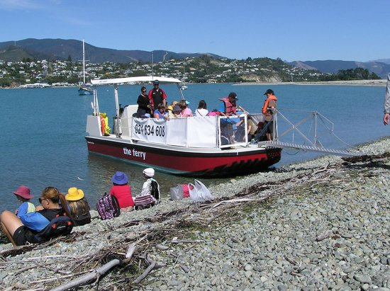 The Ferry (a.k.a Haulashore Ferry) : School outing to Boulder Bank