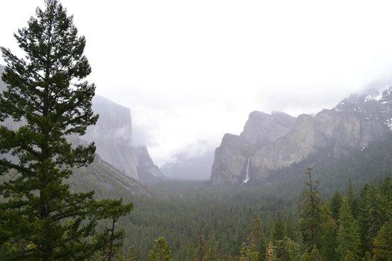 BEST WESTERN PLUS Yosemite Gateway Inn: Yosemite in the mist