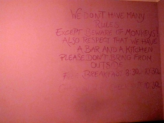 The Sparkling Turtle Backpackers Hostel: Written on the wall outside our room