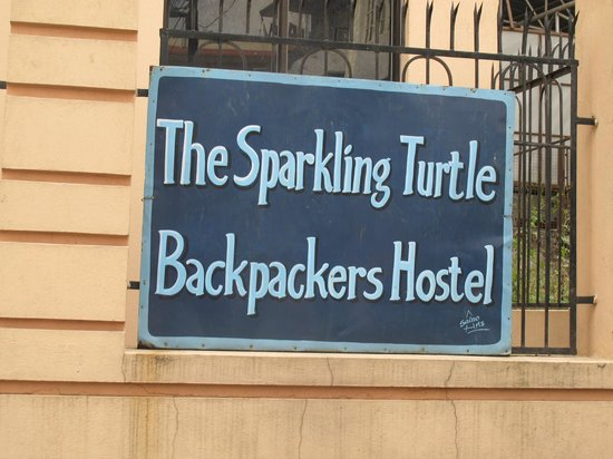 The Sparkling Turtle Backpackers Hostel: Sign