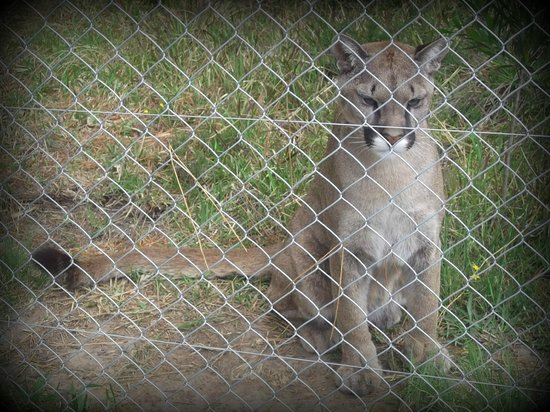 Jukani Wildlife Sanctuary: A favourite