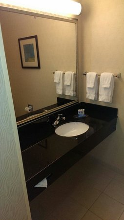 Fairfield Inn & Suites Boise Nampa: Bathroom