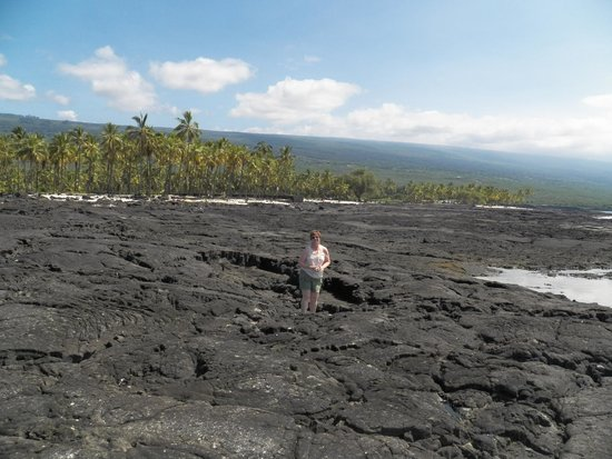 Pu'uhonua O Honaunau National Historical Park: Low tide treasures in the rocks