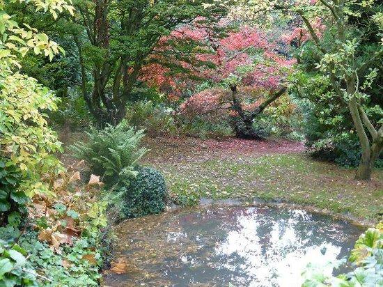 Picture Of Batsford Arboretum Moreton In Marsh Tripadvisor