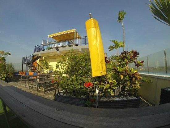 EDU Hostel Jogja: green rooftop area