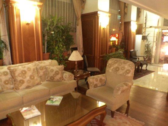 Hotel Centrum Istanbul : лобби