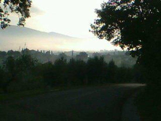 Il Poggio degli Olivi: paesaggio mattutino dal POGGIO DEGLI OLIVI