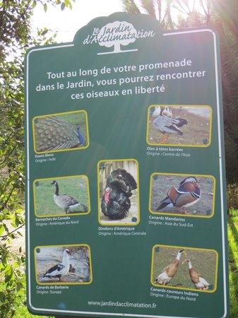 Jardin d'Acclimatation: Vögel