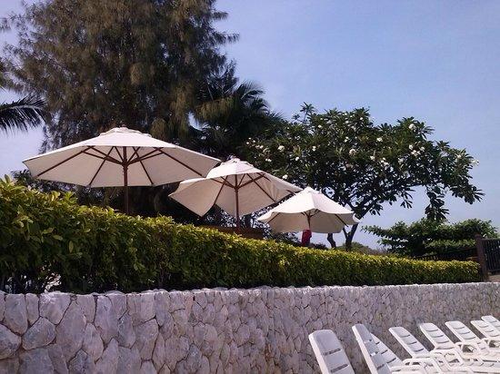 Garden Cliff Resort and Spa: Цветущие деревья на пляже