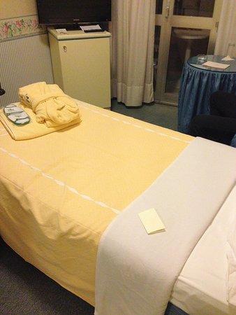 Hotel Bristol Buja : stanza singola
