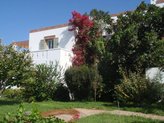 Porto Naxos Hotel : Jardines del hotel