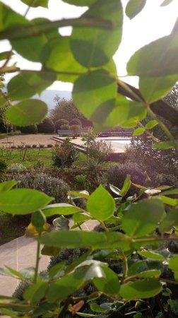 Nulle part Ailleurs : Jardin