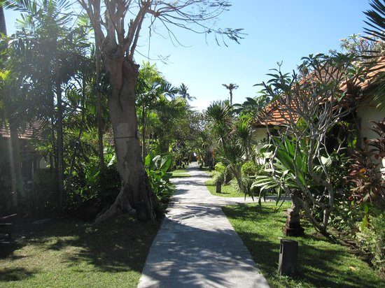 Peneeda View Beach Hotel: дорожка к морю