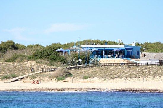 Blue Bar Formentera: Blue Bar 2013