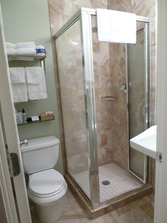 8 Dyer Hotel: bathroom: small but clean