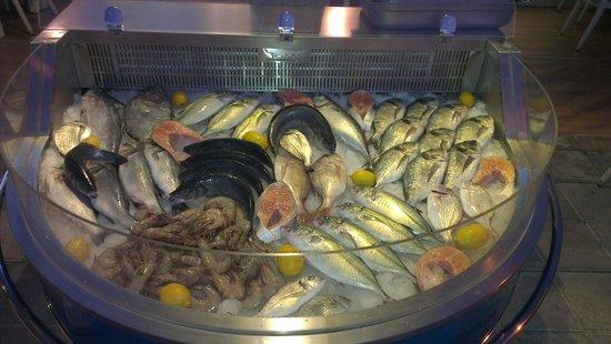 Meydan Meat & Fish Restaurant : Güzel baliklar