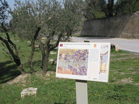 Parcours Vincent van Gogh
