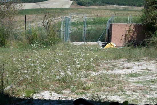 Locanda della Valle Nuova : Weedy drive and chicken coop